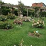 24 parque cervantes