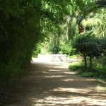26 parque palau reial